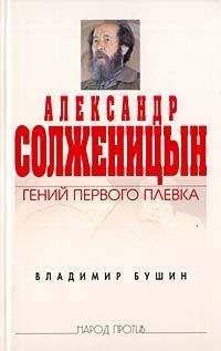 Владимир Бушин - Александр Солженицын: Гений первого плевка