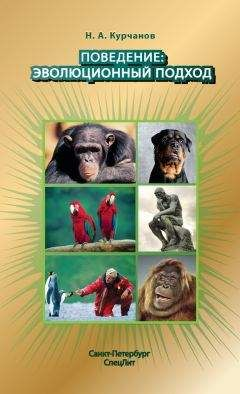 Красная королева секс и эволюция человеческой природы 2011