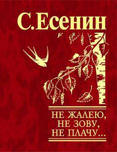 Страна негодяев есенин читать