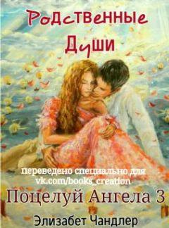 Книга Владелец  читать онлайн Автор Ольга Гусейнова